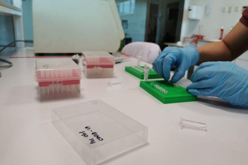 Activity in Nusantics' lab